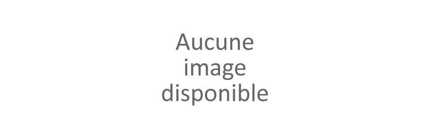 Clapet Antiretour intégrable